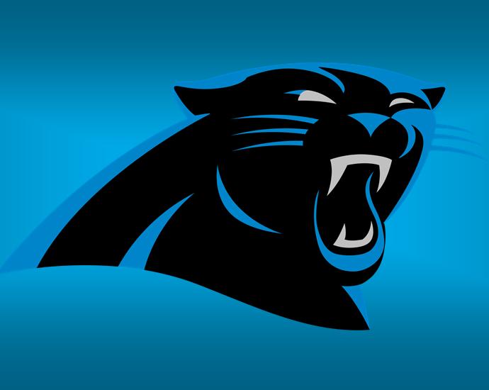 Panthers, Carolina Panthers 2020